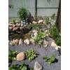 Благоустройство ландшафта - каменистые сады,   ниваки.