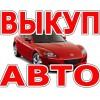 Продать авто быстро за 30 минут на vikupauto.
