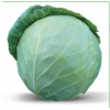 Семена белокочанной капусты honka f1 / хонка f1 китано