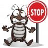 Уничтожение тараканов.   безопасные препараты.